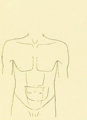 This image is taken from A manual of modern gastric methods [electronic resource] : chemical, physical and therapeutical (Medical Heritage Library, Inc.) Tags: gastrointestinal diseases child wellcomelibrary ukmhl medicalheritagelibrary europeanlibraries date1899 idb20392163