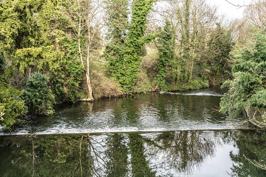 THE BOTANIC GARDENS IN GLASNEVIN DUBLIN [ TODAY I USED A VOIGTLANDER 40mm F1.2 LENS]-150647