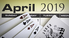 """May """"Luck"""" be with You (Eclectic Jack) Tags: aprilfools aprilfoolsday day fools april macromondays mondays macro card cards ace diamond club heart space joker fool calendar wednesday tuesday monday sunday 2019 weekday kind four poker hand best"""