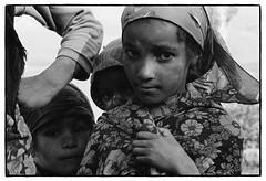 82207_04 High Atlas, Morocco, 1982 (Wolfgang_Kraus) Tags: morocco maroc marokko atlas mountains analog hautatlas imazighen berber tree landscape film ilford hp5 id11 pentax mx monochrome schneiderkreuznach adapted 11 xenon zirconia k1 dslrscanning linescan industriallens piplkan