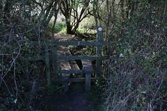 brill walk-190401-63.jpg (Phil Mercer-Kelly) Tags: sunshine spring radiooxford bbc counyryside blossom philmercer getactive brill sheep buckinghamshire europe england uk oxfordshire views bucks health windmill walker oakley walk