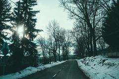 KRIS7424 (Chris.Heart) Tags: túra tél természet winter hiking forest pilis