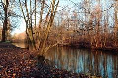 Bygholm Park - Horsens (LaDani74) Tags: reflections bygholmpark horsens denmark naturescape nature travelphotography europe danmark scandinavia woods winter river bridge
