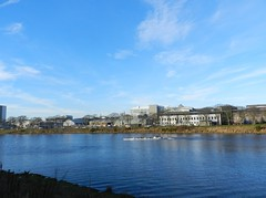 Rowers, River Dee, Aberdeen, Jan 2019 (allanmaciver) Tags: river dee aberdeen north east coast weather blue clouds esplanade torry sport allanmaciver