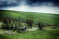 A new start (Keylight1) Tags: fujifilm keylight mjk palouse wa xt20 spring green farm hills