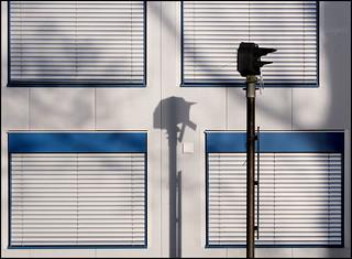 Blue framed windows