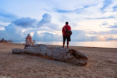 The cure (gusdiaz) Tags: beach miami florida ocean sunrise mar salt sal arena sand selfportrait autoretrato fuji fujifilm tree trunk tronco arbol cielo sky clouds nubes lifeguard station beautiful amazing south