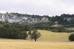 Coyhaique y alrededores (Christopher León Vilches) Tags: paisajes aysen coyhaique patagonia carretera austral campo