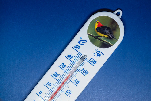 Close up shot of room thermometer on blue surface