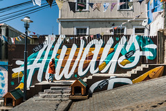 Never   Daniel Marceli - Valparaiso, Chile (Dis Satisfied) Tags: brooklyn creative creativeservices design graphicdesign handdrawntype nyc signpainting typography photography
