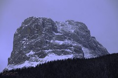 standing proud (zawaski -- Thank you for your visits & comments) Tags: canmore alberta serves beauty 4hire naturallight noflash canada zawaski©2019 calgary love ambientlight lovepeace editing canonefs55250mmf456isstm