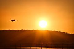 Stuttgarter Flughafen (jan.boelstler) Tags: str stuttgart sonnenuntergang sonne abendrot sunset plane flugzeug rollfeld runway orange shadow black schwarz flughafen airport tree bäume hügel hill