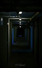 Spookhuis... #2019#assen#horror#corridor#dark#moodygrams#photography#love#photooftheday#instadaily#horrorhouse#scary#explore#wanderer#wanderlust#lights#darkness#cellar#moodyedits#pics#instamood#instaphoto#discover#walk#loveit (agnes.postma.hoogeveen) Tags: love photooftheday corridor wanderlust loveit moodygrams wanderer instaphoto dark scary darkness pics lights discover cellar horror explore assen instadaily instamood 2019 horrorhouse moodyedits photography walk
