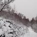 Winter footpath in Creag Meagaidh