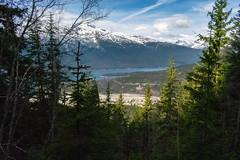 Upper Dewey Lake trail, Skagway AK (spruce_dweller) Tags: upper dewey lake trail skagway alaska mountain forest nature lynn canal