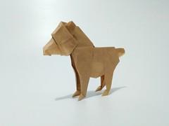 小熊 (guangxu233) Tags: bear origami origamiart paper art paperart paperfolding handmade 折纸 折り紙 折り紙作品 fold