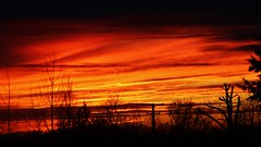Was feeling cold until the lit sky gave out blankets. (Roxy Boyce) Tags: sky atmosphere red orange mystical silhouette fire light naturallight sunset deep 2019 glow dream naturalworld naturalbeauty uk horizontal fantasticsunset late canon redsunset redandorangesunset eos wintersunset redclouds burningsky nopeople colour interesting warmth peaceful peace silentnight solitude mesmerizing altitude wintersun winter uk2019 beautifulcapture photography skyphotography skyart artinthesky naturalsky vivid angry hot darkred weare1 canoneos600d dailychallenge ourdailychallenge 365the2019edition firelike 135mm breathtaking fidgethouse inexplore composition flickr finegold goldstarawards exploredbeauty explorethis beautifulearth betterthangood asbeautifulasyouwant skyscapes ukflickrusers flickrglobal weather iso640