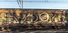 40_2019_01_18_Gelsenkirchen_Schalker_Verein_6189_049_DB_mit_H_Wagen ➡️ Gelsenkirchen (ruhrpott.sprinter) Tags: ruhrpott sprinter deutschland germany allmangne nrw ruhrgebiet gelsenkirchen lokomotive locomotives eisenbahn railroad rail zug train reisezug passenger güter cargo freight fret schalkerverein schalker abrn atlu db erb rbh rpool sbbc vl 0077 0275 0422 0426 0429 0650 0826 1232 1273 3294 4482 6101 6145 6146 6185 6189 6193 9110 re rb sbahn mond habitat hunde logo natur outdoor graffiti