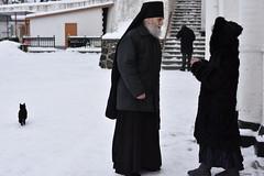 29_Photos taken by Andrey Andriyenko. January 2019
