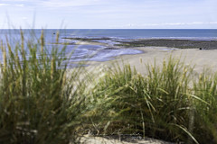 Photo of Barmouth Coastline 01