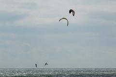 2018_08_15_0175 (EJ Bergin) Tags: sussex westsussex worthing beach seaside westworthing sea waves watersports kitesurfing kitesurfer seafront lewiscrathern jezjones