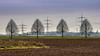 2 Lines and 1 Field (Of Light & Lenses) Tags: trees lines rows field rhine rhein niederrhein wintertrees electrictower deutschland rheinland batis28135 carlzeiss 135mm