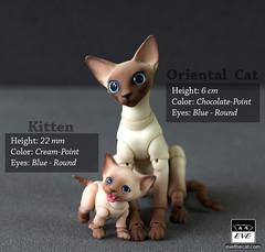 Kitties! (BJD Pets (dolls.evethecat.com)) Tags: bjd bjds bjdsale bjdforsale bjdoll bjddoll bjdlover bjdphoto bjdart dolls evestudiodolls artdoll dollart cat bjdpets kitty cute bjdcat kitten