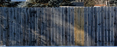 Good Fences Make Good Neighbors (joeldinda) Tags: snow lightandshadow shadowplay mullikenmeadows winter weather fence v2 village 4390 january nikon1v2 1v2 nikon michigan mulliken 2019