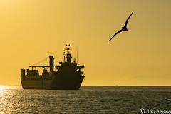 BECE Y LA GAVIOTA (josmanmelilla) Tags: melilla mar amaneceres agua españa barcos buques armadas armada fuerzasarmadas española