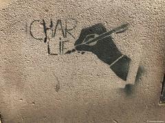 charlie© (alexandrarougeron) Tags: photo alexandra rougeron ville paris art urbain flickr style création rue