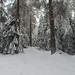 Harz-Oderbrück_e-m10_1012067110
