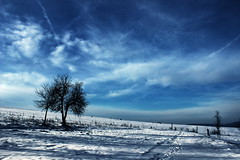 Winter was there / Ott tél volt (Ibolya Mester) Tags: