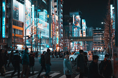 akihabara natural vibes (wanshang_yujie) Tags: stuffed toy add tags night view tokyo japan 秋葉原 akihabara sign city people building