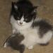 2012-12-14_09-14-08_NEX-5_DSC00595