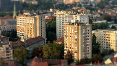 Ljubljana (Joheina Hamami) Tags: joheina hamami frankfurt germany nikon 5500 best camera prime lens 35mm 50mm 14 18 sigma art 1680 70200 world street photography strasenfotografie city snap portrait flickr