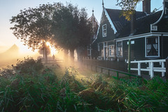 Blinded by the Light. (rudi.verschoren) Tags: zaandam schans zaanse zaandijk artistic sunrise sky sun museum europe eos europa exposure effect trees yellow unesco outdoor old outside pittoresque path fog glow green grass holland netherlands landscape light lines leaves mood morning mist colors canon contrast