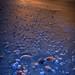 Sunrise with seashells on Bowman Beach, Sanibel Island, Florida