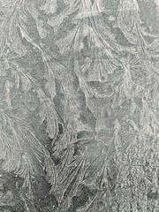 A Winter morning  window (werbaer2) Tags: winter window car ice cristal blackandwhite cold eis fenster frontscheibe kalt fraktal schwarzweis