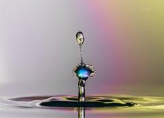 Tropfen-Experiment (THW-Berlin) Tags: water splash wasser macro