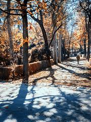 _C040219 (vic_mav) Tags: park retiro hombre man
