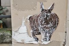 Adey_9057 rue Gérard Paris 13 (meuh1246) Tags: streetart paris adey ruegérard paris13 adelineyvetot animaux lapin butteauxcailles