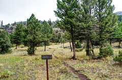 _DW27495_HDR.jpg (Upstate Dave) Tags: 2014 majorplaces hellroaringcreektrail riversandstreams trails yellowstonenationalpark hellroaringcreek places yellowstone