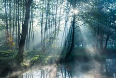Lorien morning (Sergey Surovy) Tags: 2018 autumn landscape light sunrise water hdr nikond7100 sigma183518 belarus minsk