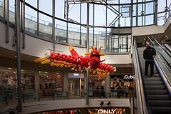 Grab the dragon (michael_hamburg69) Tags: hamburg germany deutschland tibarg tibargcenter mall einkaufscentrum luftballons balloon ballontier ausstellung event drache dragon balloondragon niendorf