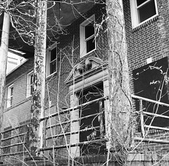 (AmSteinsgraben) Tags: wilmington delaware usa bissell sanitorium hasselblad 503cx carl zeiss cf 80mm f28 t ilford fp4 decay abandoned building public health 6x6 black white