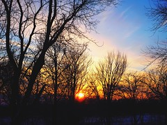 Coucher du soleil du 23 février 2019. (Lise1011) Tags: bleu ciel blue sky rural soleil hiver winter sun paysage landscape arbres trees nature sunset