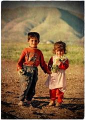 💛     K U R D I S T A N        كوردستان🌟 (Kurdistan Photo كوردستان) Tags: zagros zoregva zazaki zaxo zindî azadî azmar xebat xaneqînê christianity cegerxwin van love mahabad music arbil democracy freedom genocide herêmakurdistanê hawler hewler hewlêr halabja herêma judaism jerusalem kurdistan4all lalish qamishli qamislo qamishlî qasimlo war erbil efrînê refugee revolution rojava referendum yezidism yazidis yârsânism unhcr peshmerga peshmerge grass tree landscape field sky mountain animal forest livestock portra people building night 2019 nature roa wall road کوردستان wood