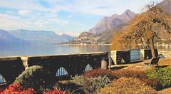 Panoramica da Sale Marasino (Triumplino@rico G.V.T) Tags: salemarasino triumplinoenrico panoramica provdibrescia lagodiseo