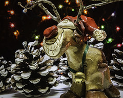 Rudolph (Jack Heald) Tags: holidaybokeh macromondays macro mondays holiday merrychristmas rudolph heald jack d750 60mm micro december 2018 rednosedreindeer