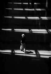 like a staircase of light (reiko_robinami) Tags: streetphotography shadow lightandshadow monochrome blackandwhite urban tokyo japan